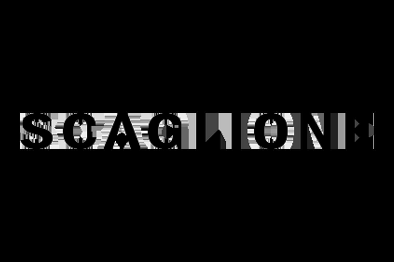 PHV_scaglione_logo-1